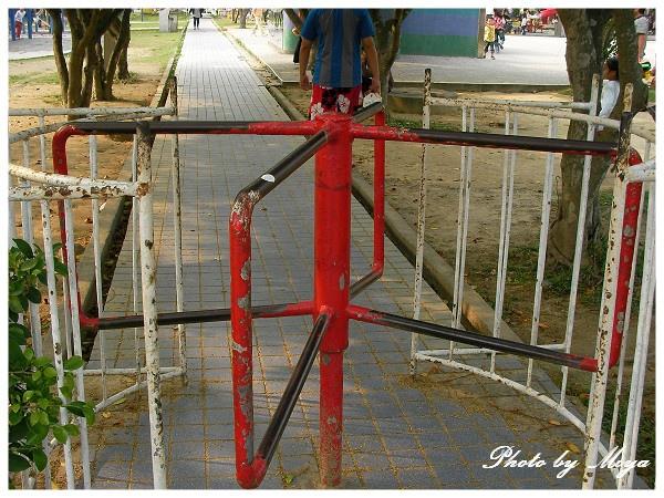 中興新村SANY1082.jpg