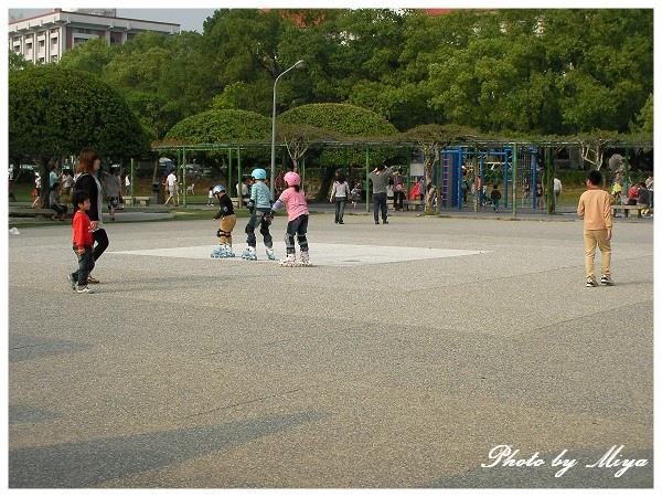中興新村SANY1083.jpg