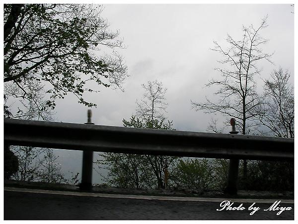 清境SANY1263.jpg