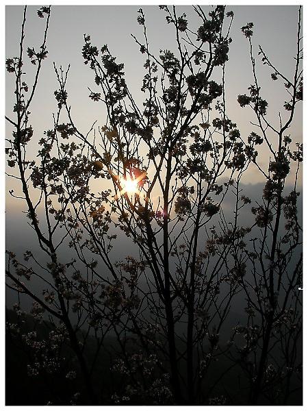 清境SANY1351.jpg