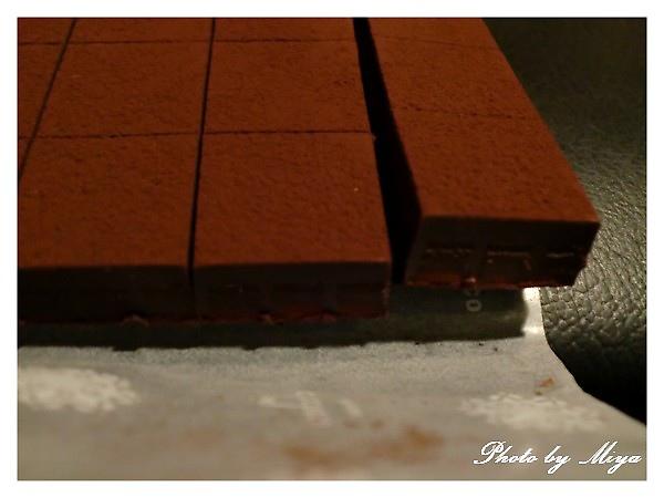 巧克力+提拉米蘇CIMG0298.jpg