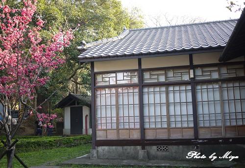 新竹動物園P1040910.jpg