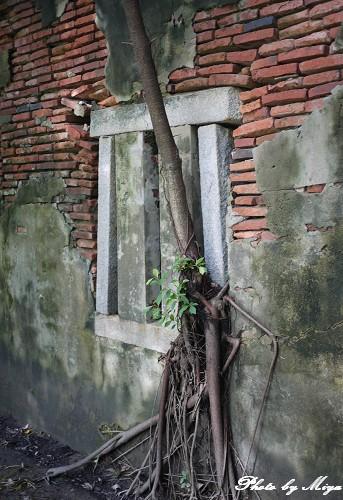 安平樹屋P1010957.jpg