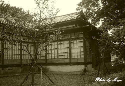 新竹動物園P1040946.jpg
