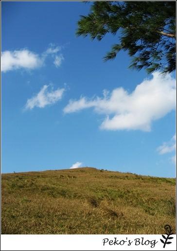 門馬羅山.jpg