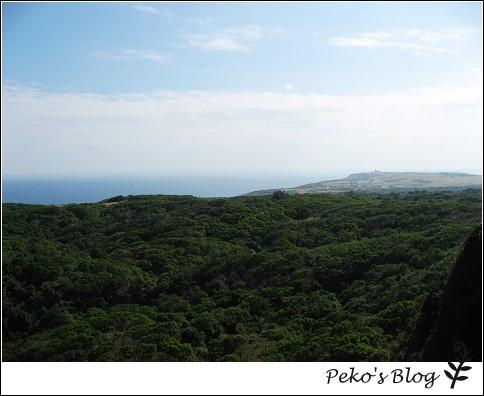 社頂公園-涼亭觀景.jpg