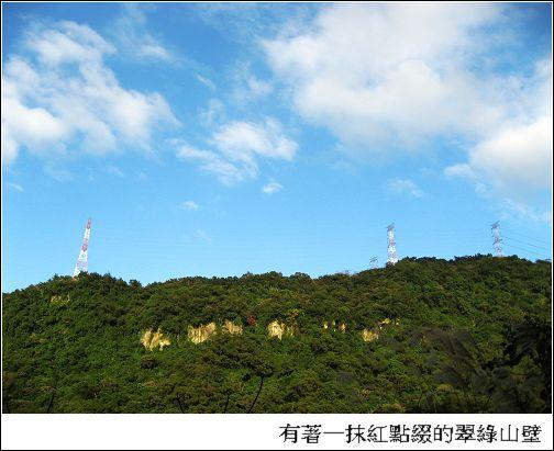 翠綠山壁.jpg