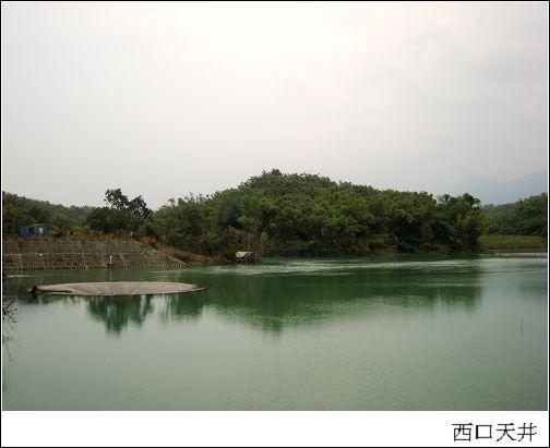 西口天井.jpg