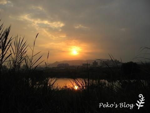 夕陽與濕地.jpg