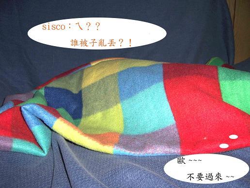 2005120802-20.JPG