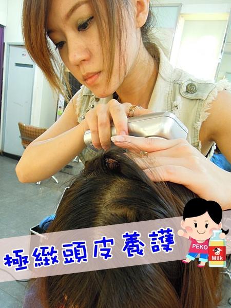 A.salon 板橋 剪髮 燙髮 護髮 極緻頭皮養護01