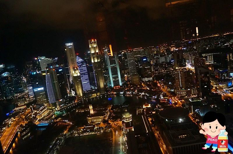 新加坡史丹佛旅館夜景10