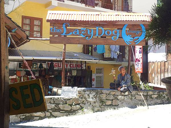 Manali-The Lazy dog餐廳