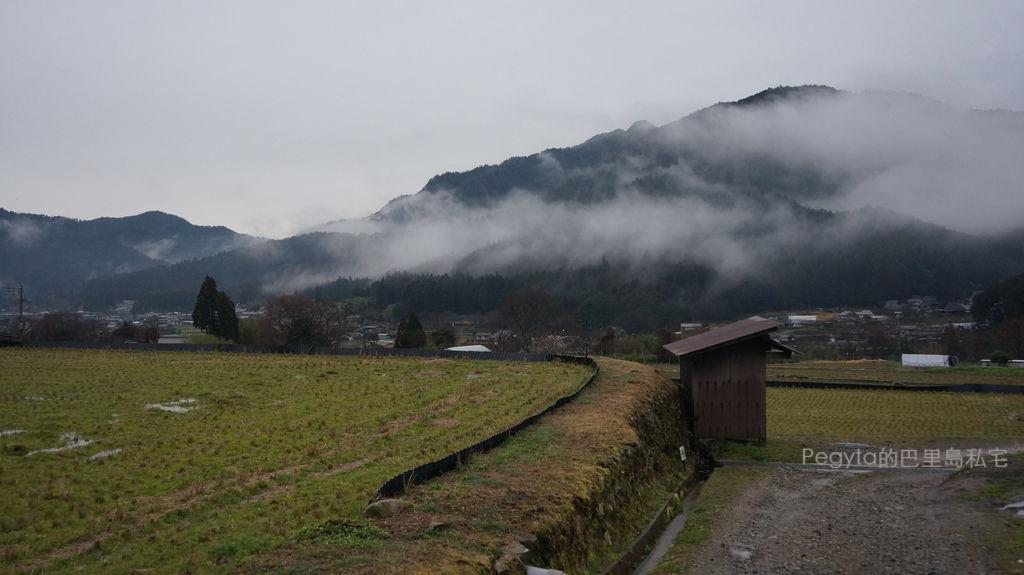日本京都奈良櫻花旅遊88.JPG