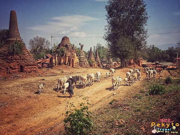 緬甸旅行資料部落格遊記130.jpg