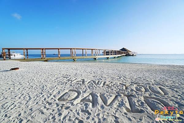 Maldives Hurawalhi海底餐廳 13
