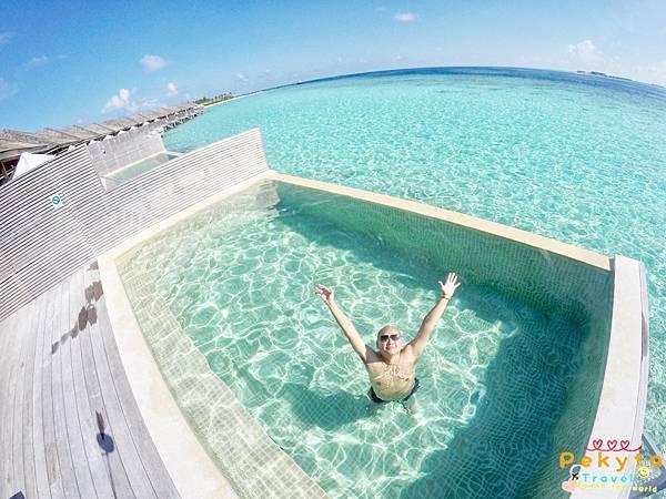 Maldives Hurawalhi海底餐廳 16