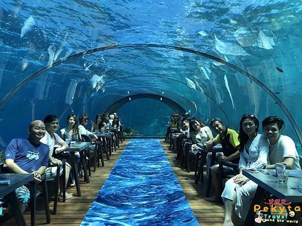 Maldives Hurawalhi渡假村_8732