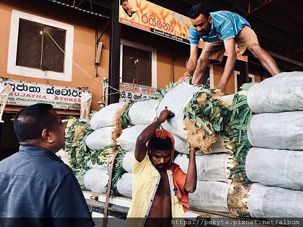 斯里蘭卡自助旅行_2451.jpg
