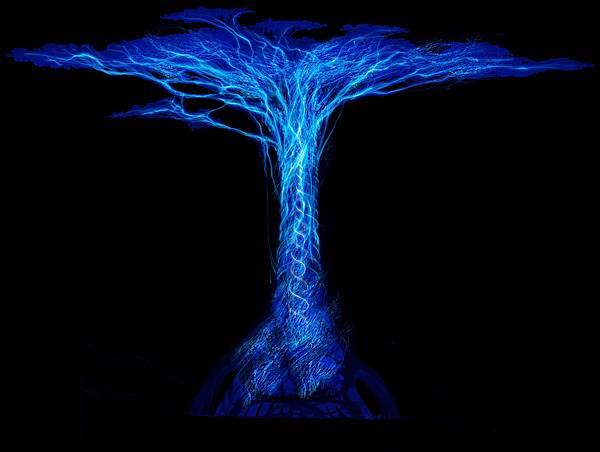 本尊傳承皈依壇城樹連結