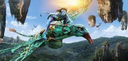 騎乘本尊的羽翼馳騁本尊的壇城淨土
