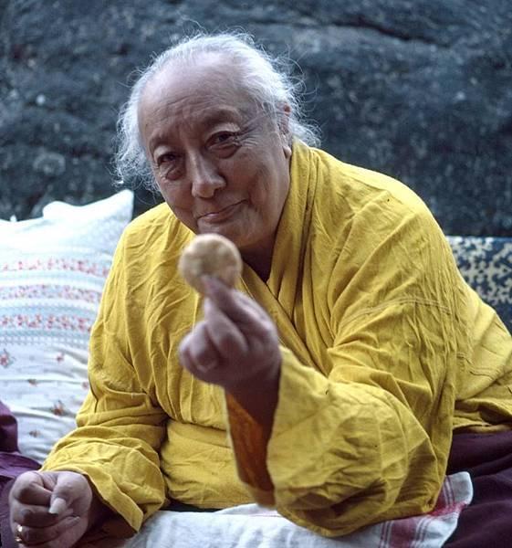 依怙主頂果欽哲法王於1991年9月28日在不丹廷布醫院圓寂之處.jpg