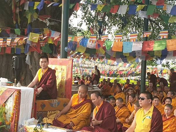 穆松祖古的法座就在蘭毗尼佛陀出生地的菩提樹旁.JPG