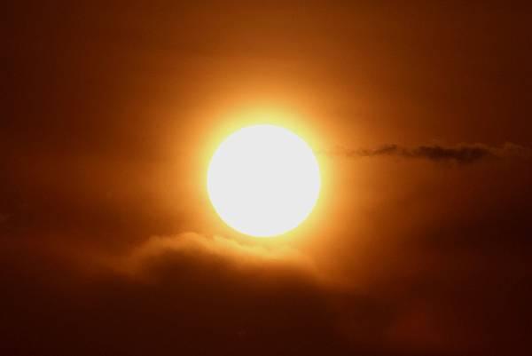 清晨初升的日光.jpg