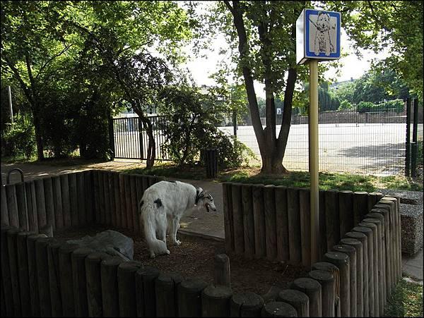 柯瑪小狗方便處