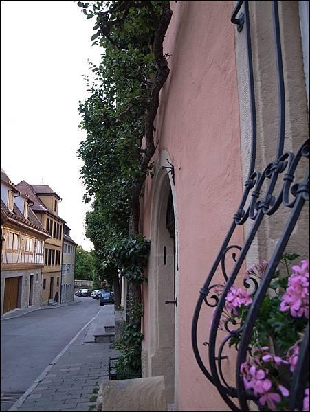 樹沿著房屋牆面長的樹