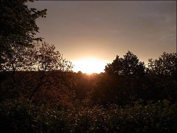 城堡花園夕陽