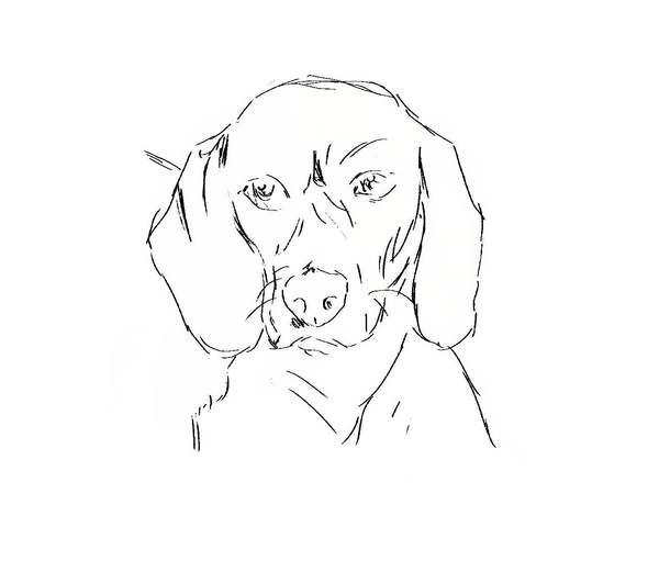 imo sketch