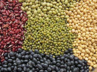豆子的特性