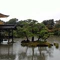 1061016~16難波,奈良.自由行_171017_0231.jpg