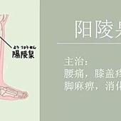 109陽陵泉.jpg