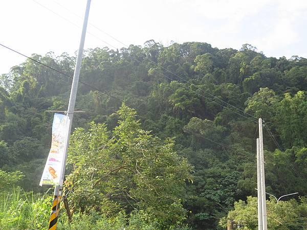 沿途景觀 (1).JPG