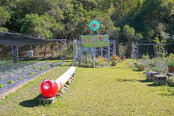 甲仙陳家香草園