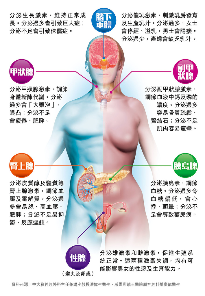 L1277_012_1277_health.jpg