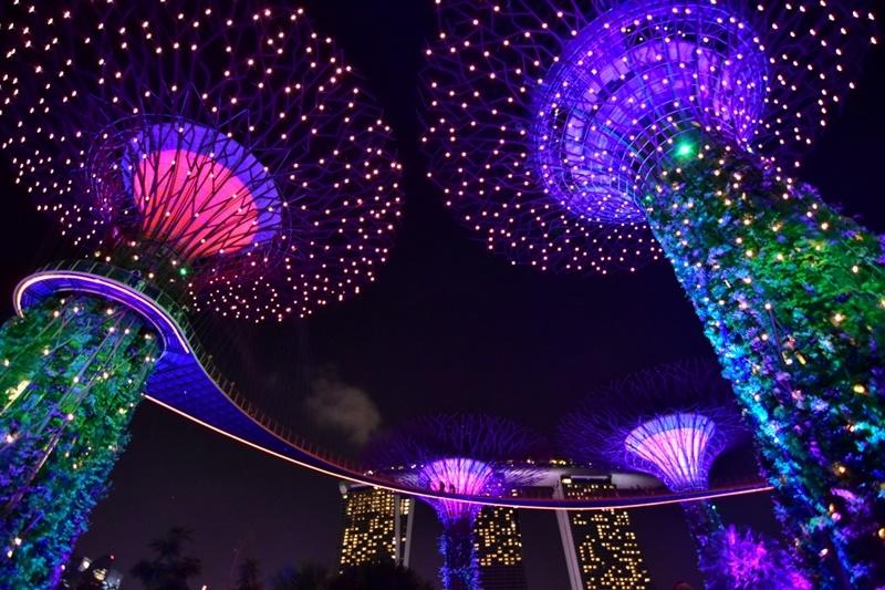 超級樹燈光秀