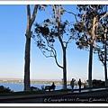 Kings Park - West Perth 20110510 (7).jpg
