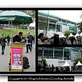 Melbourne Cup 2011 (3).jpg