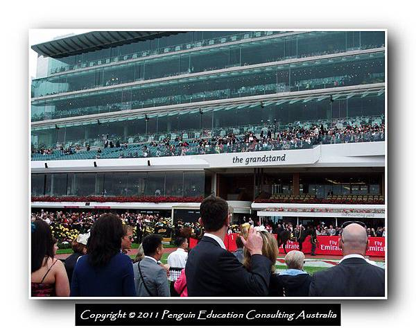 Melbourne Cup 2011 (8).jpg