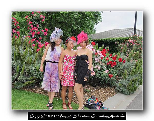 Melbourne Cup 2011 (10).jpg