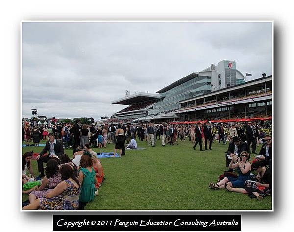 Melbourne Cup 2011 (11).jpg