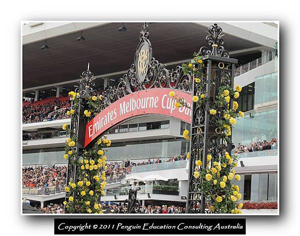 Melbourne Cup 2011 (19).jpg