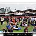 Melbourne Cup 2011 (26).jpg