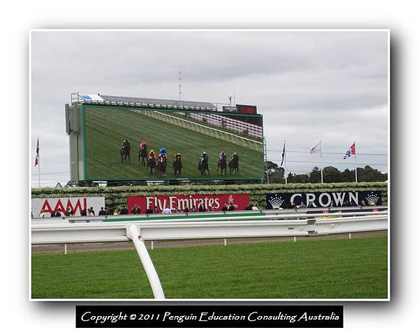 Melbourne Cup 2011 (29).jpg