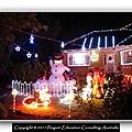 Xmas Light 2011.13.JPG