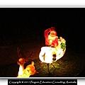 Xmas Light 2011.22.JPG
