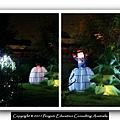 Xmas Light 2011.26.jpg